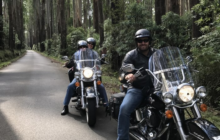 Harley Davidsons riding the Black Spur