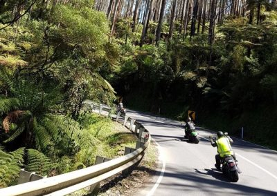 Motorcycles at Black Spur